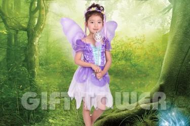 G-0138  Pretty Violet Fairy