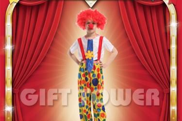 B-0132  Funny Clown