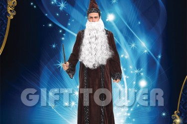 M-0116     Wizard Costume