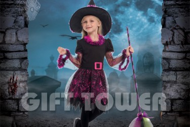 G-0267     Web Witch