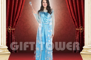W-0231     Frsoted Princess Elsa