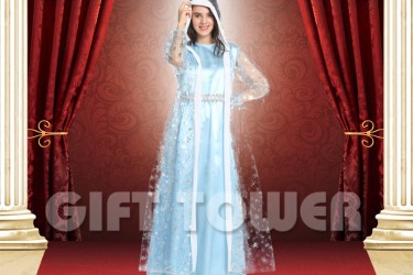 W-0239     Frosted Princess Elsa